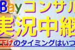 ebayコンサル 値下げ